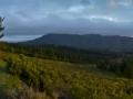 panorama-panoramic