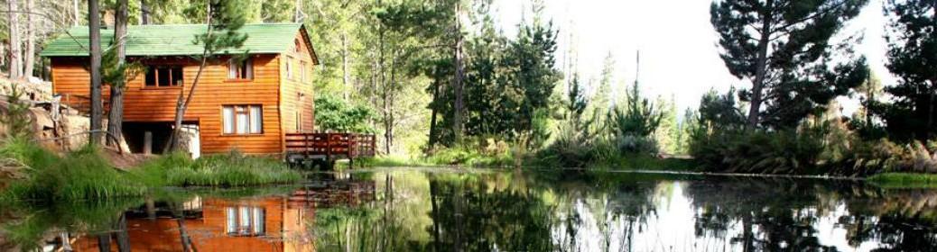 Waterblom Landscape